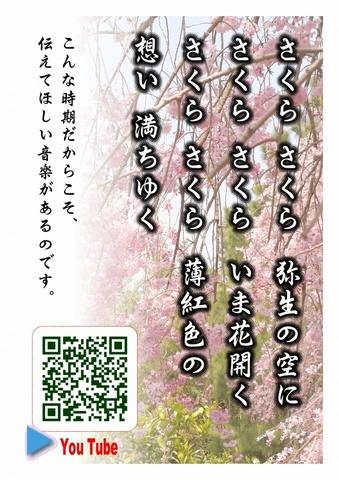 しだれの桜 QR.jpg
